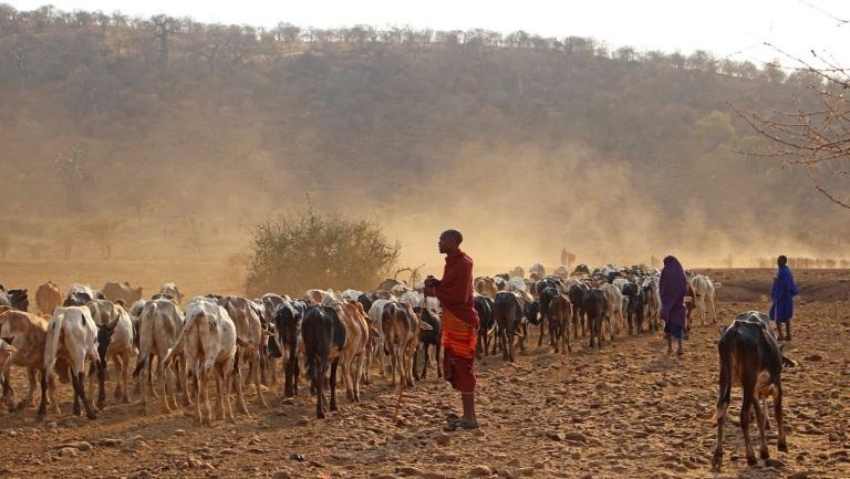 peuple-massai-tanzania